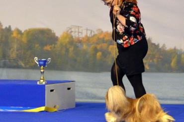 Tampere International dog show 3.5.2015